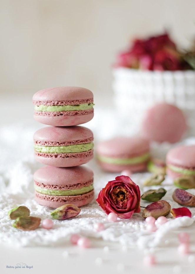 macs-rosa-y-pistacho058