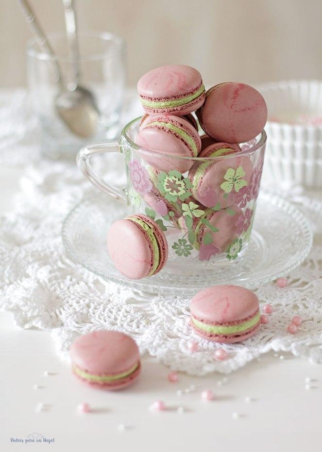 macs-rosa-y-pistacho059