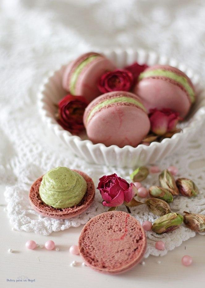 macs-rosa-y-pistacho061