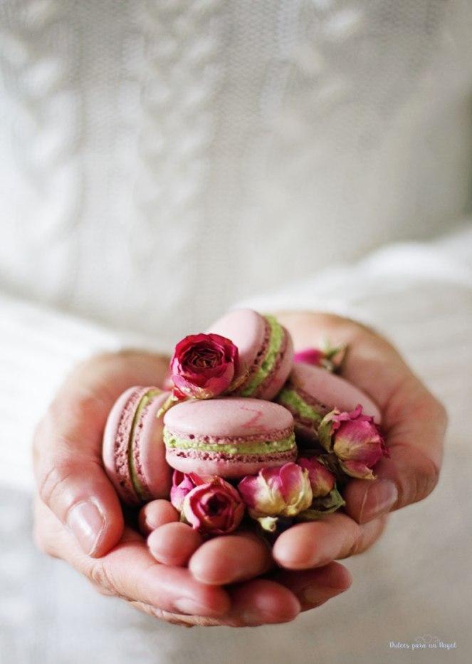macs-rosa-y-pistacho073
