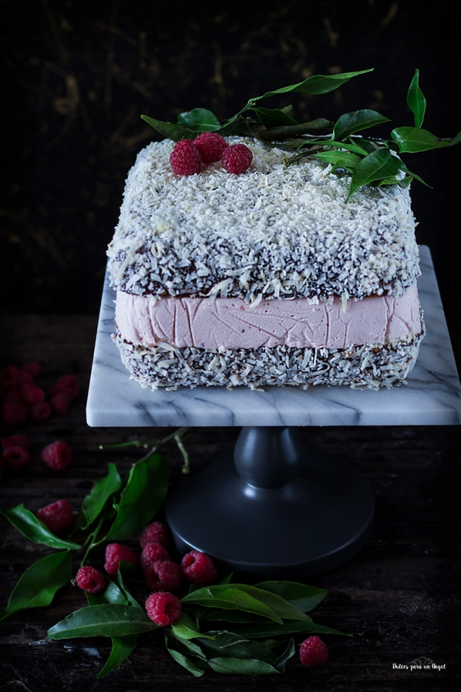 lamington cake_MG_0433