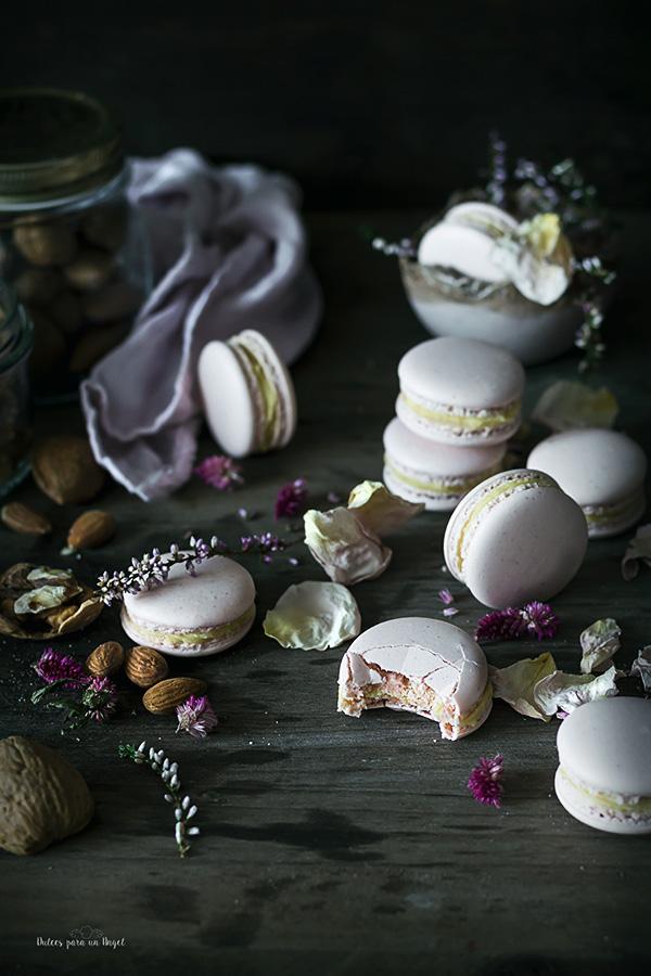 macarons nuez_MG_3100