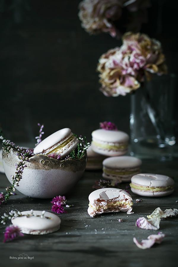 macarons nuez_MG_3113