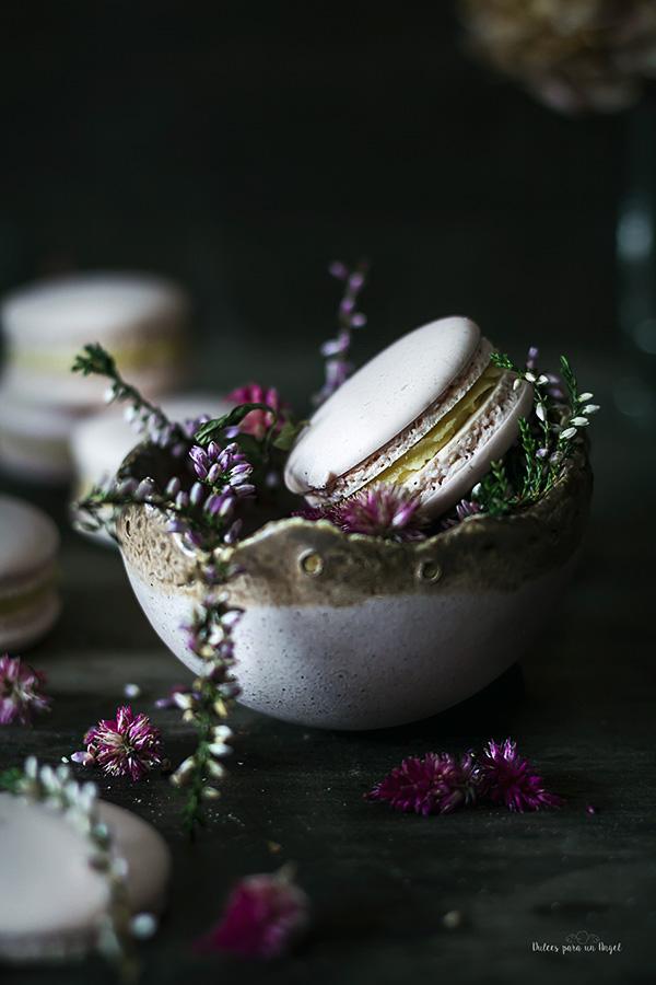 macarons nuez_MG_3120